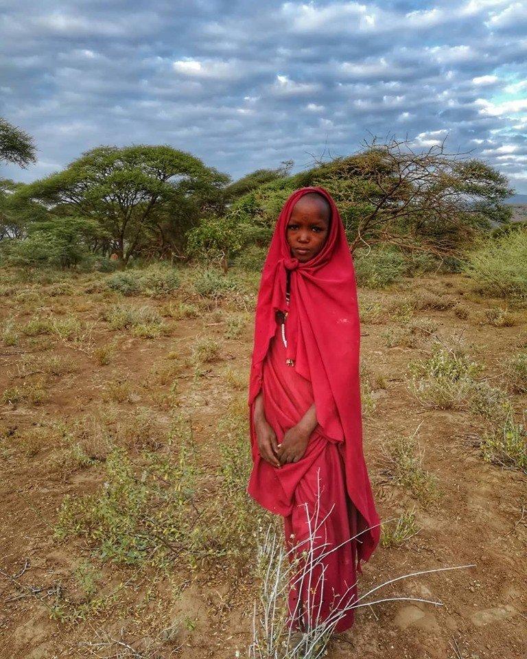 Tanzania. Maasai Mara, cheap Safari and more.