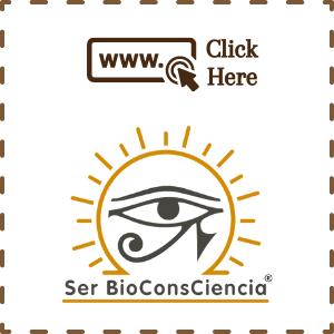 Ser BioconsCiencia - web site design